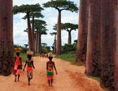 International Calendar 2014 - Madagascar