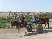 International Calendar 2014 - Turkmenistan